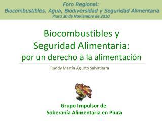Biocombustibles y  Seguridad Alimentaria: por un derecho a la alimentación