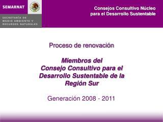 Proceso de renovaci n  Miembros del  Consejo Consultivo para el  Desarrollo Sustentable de la Regi n Sur   Generaci n 20