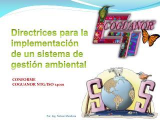Directrices para la implementación  de un sistema de gestión ambiental