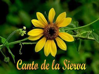 Canto de la Sierva