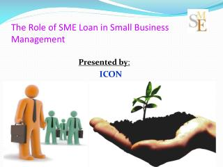The Role of SME Loan in Small Business Management