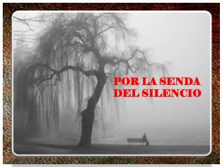 POR LA SENDA  DEL SILENCIO