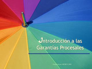 I ntroducción a las  Garantías Procesales