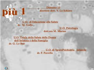Distretto 13                  direttore dott. V. Lo Schiavo