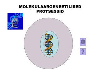 MOLEKULAARGENEETILISED PROTSESSID
