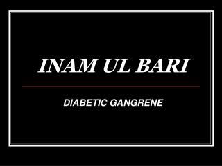 INAM UL BARI
