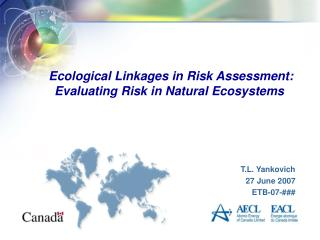 Ecological Linkages in Risk Assessment:  Evaluating Risk in Natural Ecosystems