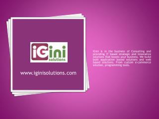 iginisolutions