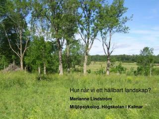 Hur når vi ett hållbart landskap?