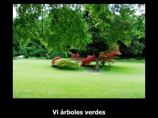 Vi árboles verdes
