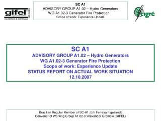 SC A1 ADVISORY GROUP A1.02 – Hydro Generators WG A1.02-3 Generator Fire Protection