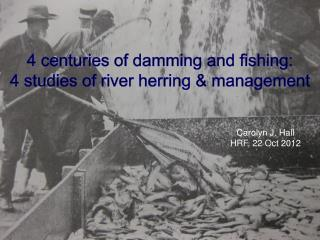 4 centuries of damming and fishing:  4 studies of river herring & management