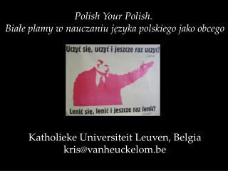 Polish Your Polish.  Białe plamy w nauczaniu języka polskiego jako obcego