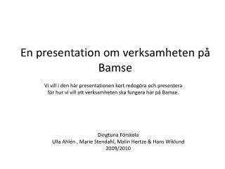 En presentation om verksamheten på Bamse