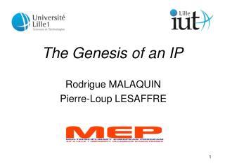 The Genesis of an IP