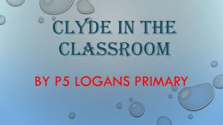 Clyde in the classroom