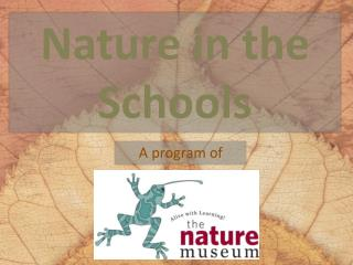 Nature in the Schools