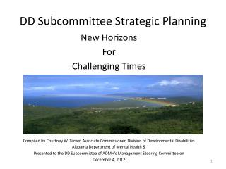 DD Subcommittee Strategic Planning