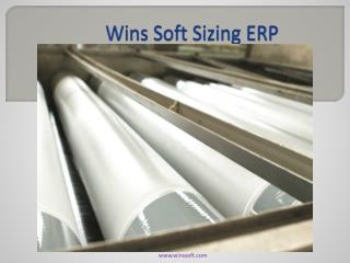 Wins Soft Sizing ERP