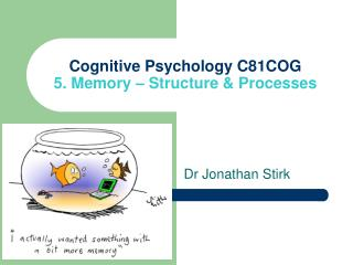Cognitive Psychology C81COG 5. Memory � Structure & Processes