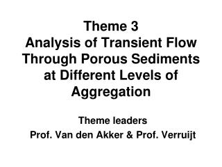 Theme 3 Analysis of Transient Flow Through Porous Sediments at Different Levels of Aggregation