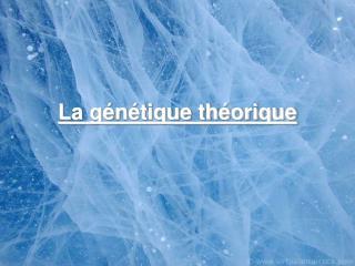 La génétique théorique