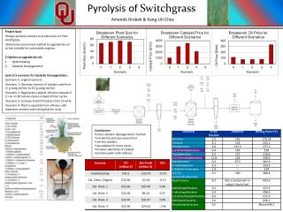 Project Goal: Design  pyrolysis  process to produce bio-oil from  switchgrass .
