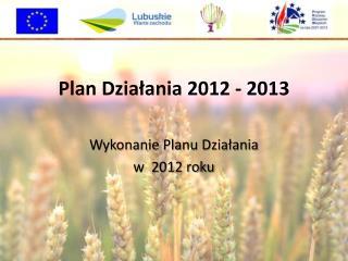 Plan Działania 2012 - 2013
