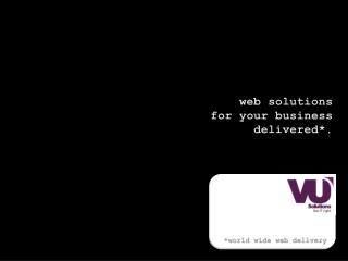 web solutions for your business delivered*.