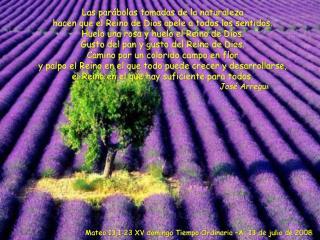 Las parábolas tomadas de la naturaleza  hacen que el Reino de Dios apele a todos los sentidos.