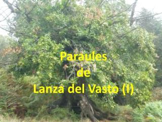 Paraules  de  Lanza del Vasto (I)