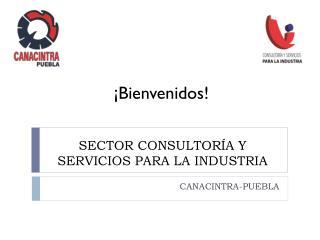 SECTOR CONSULTOR�A Y SERVICIOS PARA LA INDUSTRIA