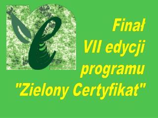 Finał VII edycji programu