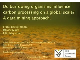 Do burrowing organisms influence carbon processing on a global scale?  A data mining approach.