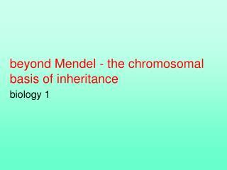 Beyond Mendel - the chromosomal  basis of inheritance