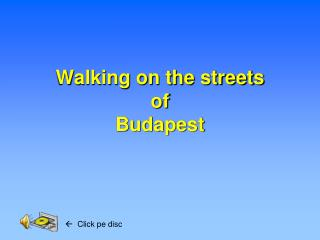 Walking on the streets  of  Budapest