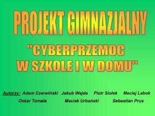 Autorzy:   Adam Czerwiński Jakub Wajda     Piotr Siołek     Maciej Labok