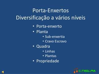 Porta-enxerto Planta Sub-enxertia Cravo Escravo Quadra Linhas Plantas Propriedade