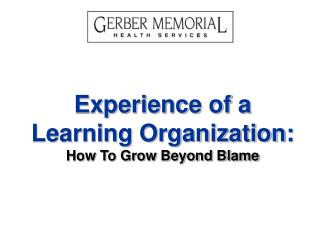 Experience of a Learning Organization: How To Grow Beyond Blame