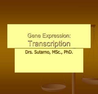 Gene Expression: Transcription