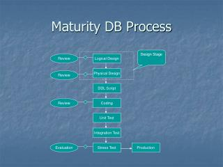 Maturity DB Process