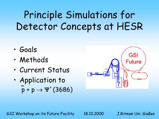 Principle Simulations for Detector Concepts at HESR