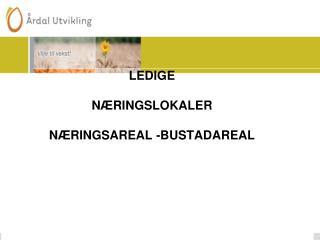 LEDIGE  NÆRINGSLOKALER   NÆRINGSAREAL -BUSTADAREAL