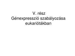 V. rész  Génexpresszió szabályozása eukariótákban
