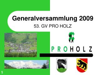 Generalversammlung 2009 53. GV PRO HOLZ