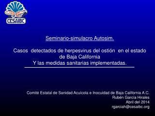 Seminario-simulacro Autosim.