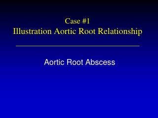 Case #1 Illustration Aortic Root Relationship