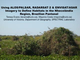 Study Area – Nhecolândia Region The Brazilian Pantanal