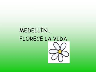 MEDELL�N... FLORECE LA VIDA