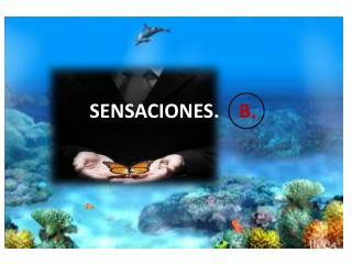 SENSACIONES.     B.